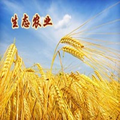 农业可持续发展与生态农业建设专题